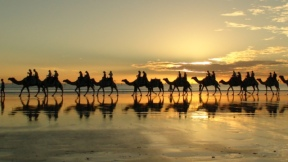 'The Camels' of Cable Be3ach