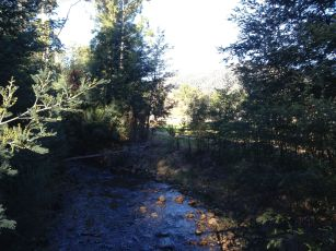 Steavenson River