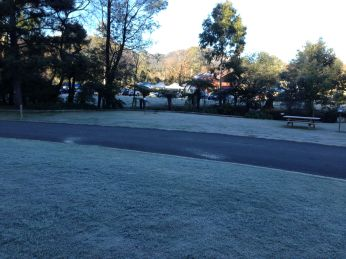 Early Morning Frost