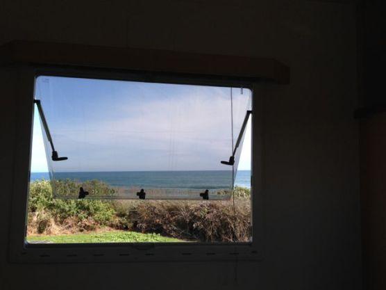 Saturday's View