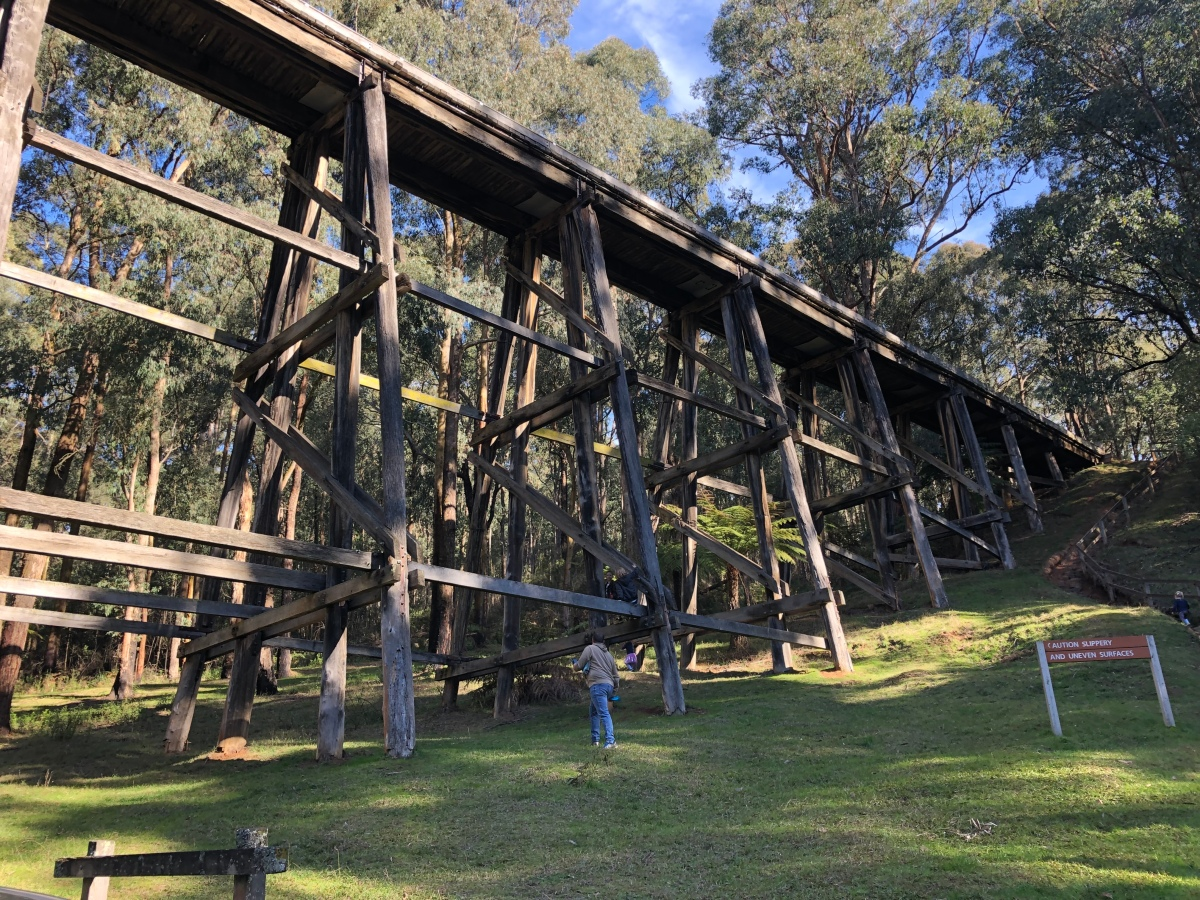 190706 Noojee Trestle Bridge Victoria